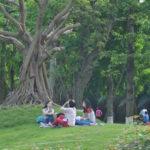 khu vui chơi dành cho trẻ em Ecopark